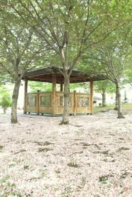円山のとある公園
